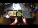 Сеем кактусы на перлит Как посеять семена кактусов