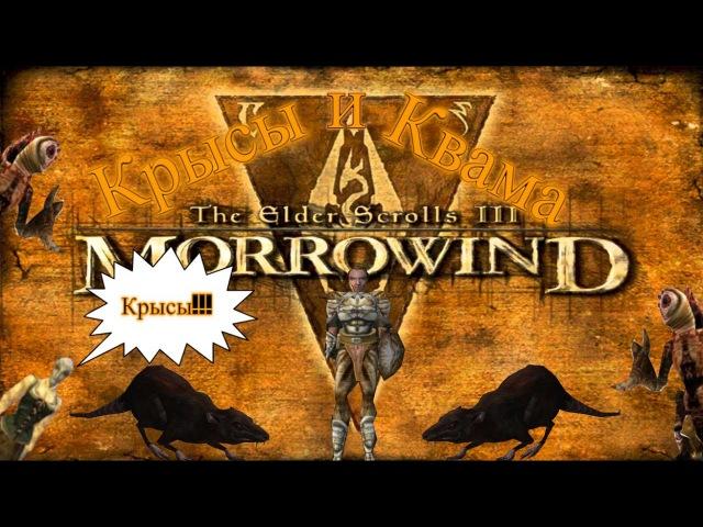 Прохождение The elder scrolls III: Morrowind Серия 4 Крысы и квама