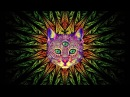 Best Rave/Party Songs Mix 1: PSY TRANCE, MINIMAL, GOA TRANCE, HEAVY BASS (song list in description)
