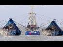 ЭТУ ЖЕСТЬ РЫБАЛКУ НУЖНО ВИДЕТЬ ! Хитрые браконьеры Вот это рыбалка 2018 Ты не поверишь Рыбалка 2018 Зимняя Рыбалка 2018 Приколы на рыбалке Рыбалка видео приколы