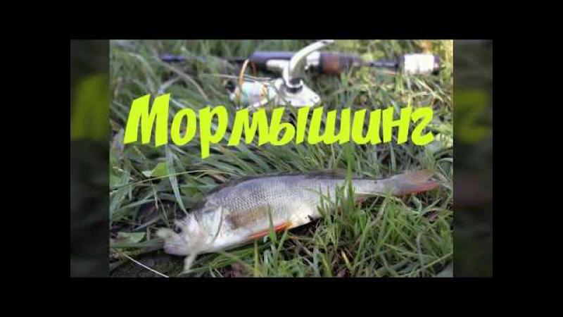 Мормышинг Первые заморозки Портновская Полный ноль (практически)