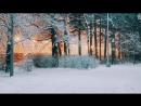 Зимний центральный парк им. Кирова в Санкт-Петербурге