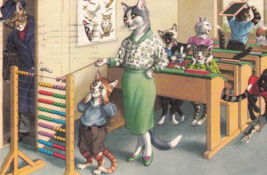 С днем учителя картинки с котами