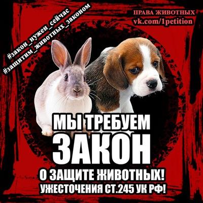 Светлана Степанова  a4b57a6da132e
