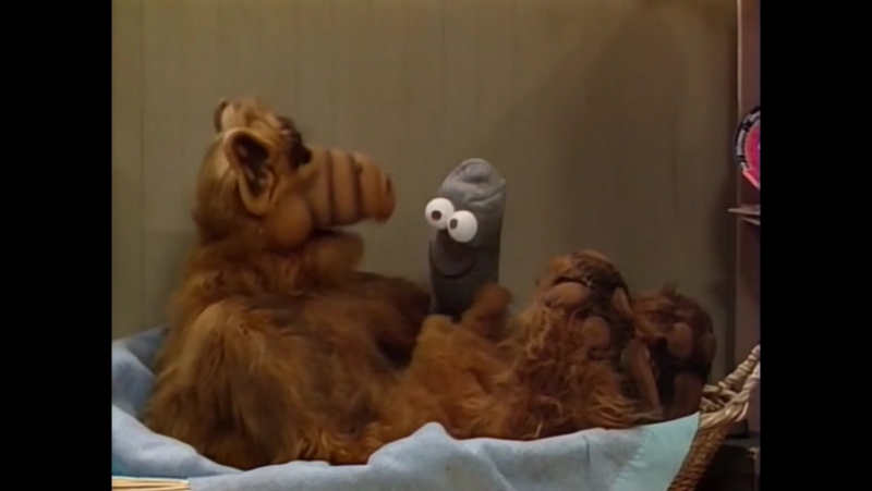 Alf Quote Season 1 Episode 6_Альф и носок