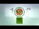 Tupperware 101° МикроГурмэ порционные контейнеры