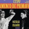 "Фестиваль ""Flamenco de primavera"""