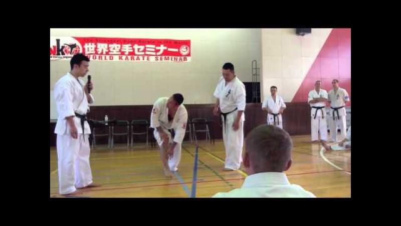世界空手セミナー 石原延 Shinkyokushinkai World karate seminar Tadashi Ishihara