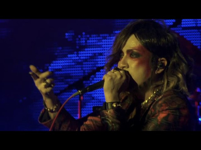 The GazettE - Required Malfunction (Live)