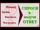СВО №7. Голодание, КМС в 40 лет, программы Шейко и Бубновский
