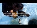 Подлёдная рыбалка на белую рыбу сетями в НАО 2018. Ice fishing for white fish by shuttle nets