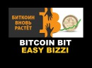 Авто радио Bitcoin Bit EasyBizzi Platincoin Ethereum Bitcoincash Dash Изи бизи