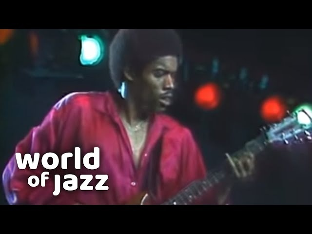 Virtuoso guitarist Stanley Jordan live at the North Sea Jazz Festival • 11-07-1987 • World of Jazz