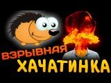 Взрывная хачатинка жаждующая копуляции с ежом | Пранки от Евгения Вольнова | Пра ...
