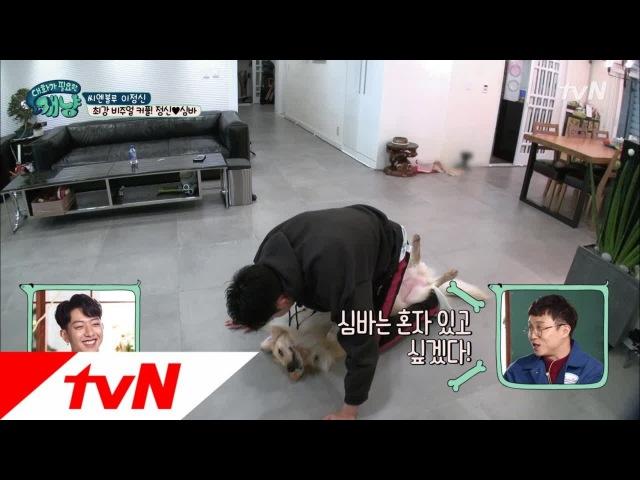 171213 tvN's Dear My Human EP13 Lee Jungshin Simba cuts 1