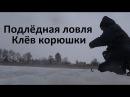 Зимняя ловля корюшки в Прибалтике