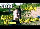 VLOG Драка Мопс vs Мартыненко / Взрываю 14 кг муки! / Вова TWIN