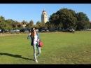 Как поступить в Стенфорд