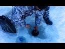 Рыбалка в Сибири.Ставим жерлицы. На древнем Буране. Мотособака Омич.