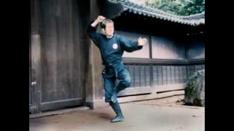 Ninjutsu Grand Master Masaaki Hatsumi in Action Pt 12