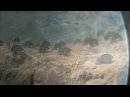 Discovery Великий замысел по Стивену Хокингу Смысл жизни 2012