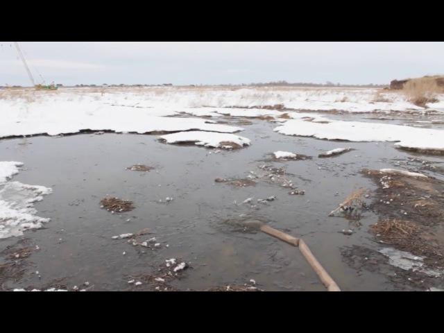В Подстепках в ЖК Солнечный управляющая компания сливает канализационные стоки в поле