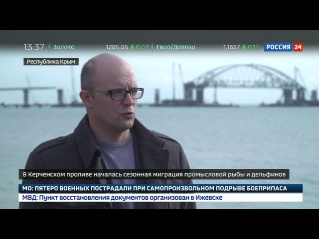Новости на «Россия 24» • Ученые проследят за миграцией рыбы и дельфинов в Керченском проливе