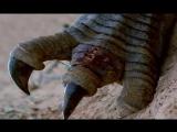 ПРОГУЛКИ С ДИНОЗАВРАМИ БАЛЛАДА О БОЛЬШОМ АЛЕ (Walking with Dinosaurs The Ballad of Big Al). ЧАСТЬ 1