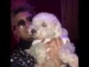 У Пампа появилась собачка ♥