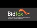 BidFox_ инструкция для Владельца паблика