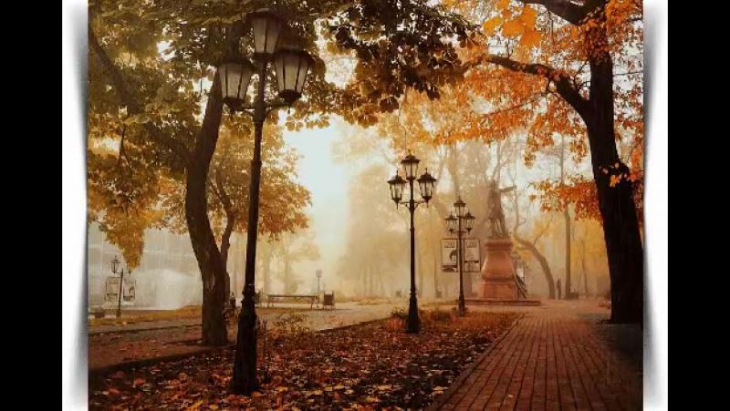 Красива осінь вишиває клени червоним, жовтим, срібним, золотим.