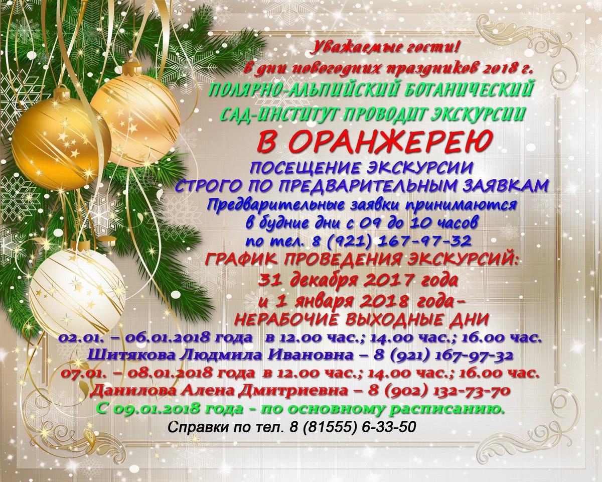 Новогоднее расписание экскурсий