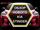 Обзор KIA Stinger от Stenni Тест Драйв