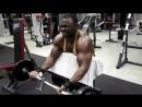Arms massacre !! Pump em biceps part 1