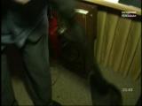 Новости города (Городской телеканал, 25.01.2018) Выпуск в 21:30. Юлия Тихомирова