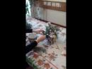 Курсы флористики - украшение к Новому году