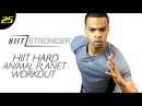 30 Min. HIIT Animal Planet BEAST Mode Workout HIIT/STRONGER Day 25