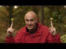 Секреты квантовой физики Ч 2 Да будет Жизнь HD Документальный фильм BBC на русском