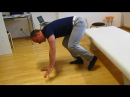 FUN lesson Walking on all fours Feldenkrais with Alfons