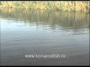 Рыбалка летом - сом.mp4