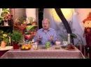 317 Стевия средство от диабета атеросклероза и от ожирения