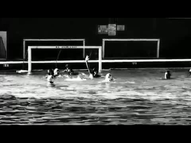 Water Polo (coub21)