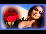 Королева моих снов ♚ Аслан Кятов
