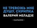 Валерий Меладзе - Не тревожь мне душу скрипка Караоке