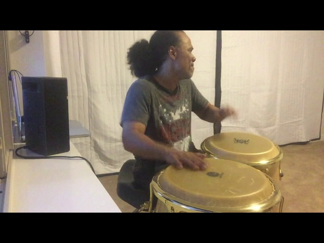 Paoli Mejias Language of the conga drums