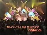 Shonen Knife Brown Mushrooms