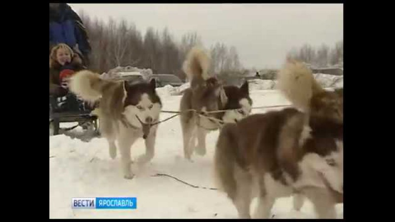 «Зимние забавы в Угличе» вошли в тройку лучших зимних фестивалей России