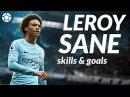 Leroy Sane ● Crazy Skills x Goals ● 2017 ● 1080p