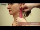 Ингибирование грудино ключично сосцевидной мышцы