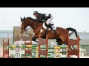 Glorious Equestrian Edit